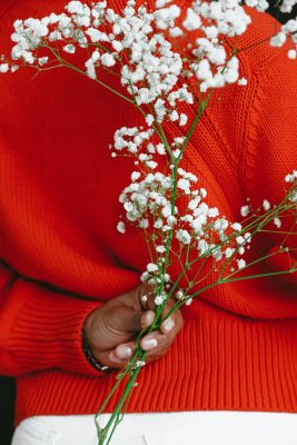 person wearing red sweater and baby's breath flowers